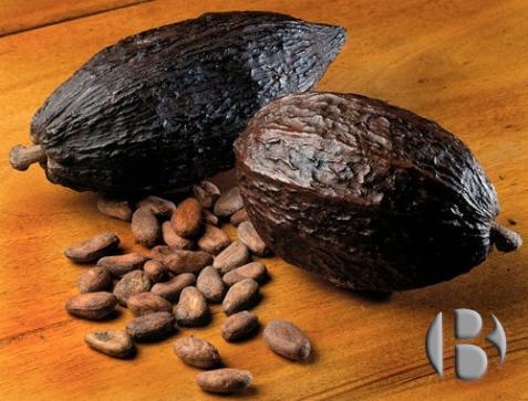 какао для торговых автоматов