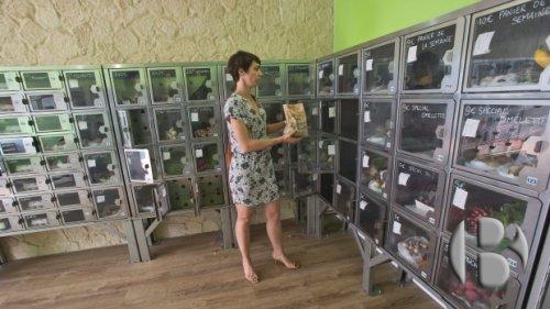 автомат по продаже фермерской продукции
