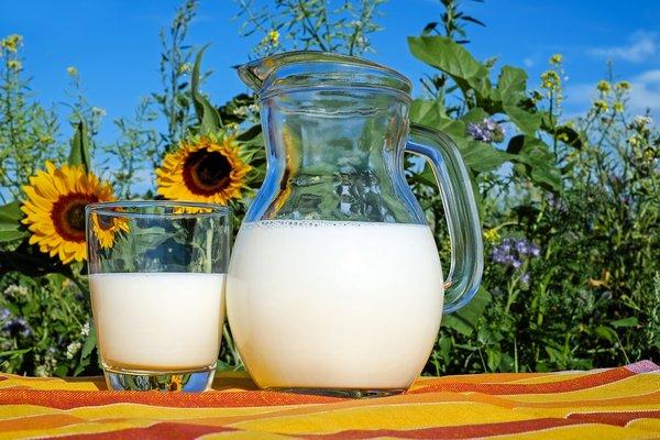 Пятый Международный агропромышленный молочный форум
