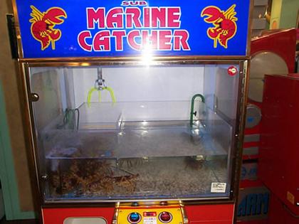 Интернет Игровые Автоматы Деньги