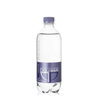 Mineral water Dolomia pet Elegant still