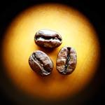 Кофе-зерно для торговых автоматов