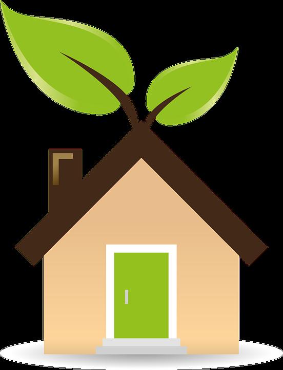 «Зеленый» вендинг и ритейл